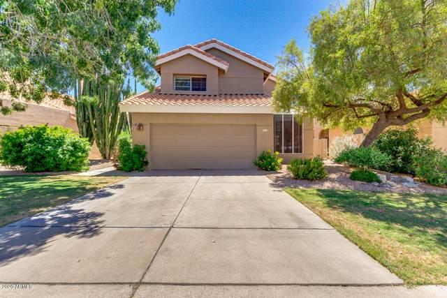 6723 E Sugarloaf Street, Mesa, AZ 85215 (MLS #6095892) :: Yost Realty Group at RE/MAX Casa Grande