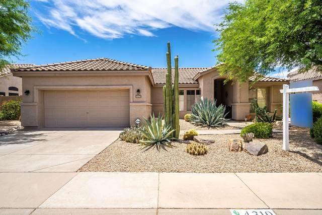 4319 E Mossman Road, Phoenix, AZ 85050 (MLS #6095930) :: The Luna Team