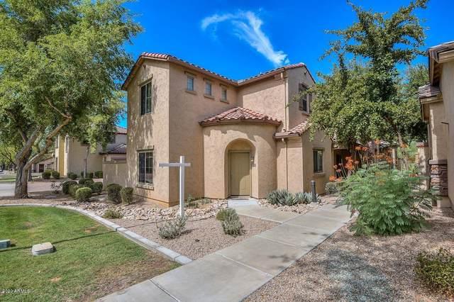 3704 W Vivian Court, Phoenix, AZ 85086 (MLS #6095991) :: Dijkstra & Co.