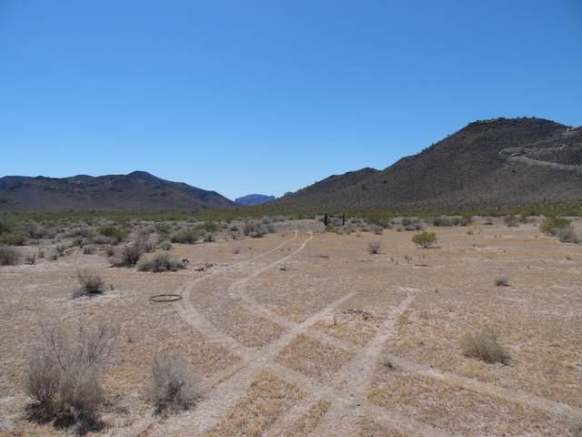 302 S 403rd Avenue, Tonopah, AZ 85354 (MLS #6095993) :: The W Group