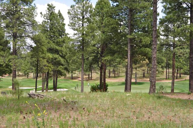 2000 E Del Rae Drive, Flagstaff, AZ 86005 (MLS #6095998) :: Long Realty West Valley
