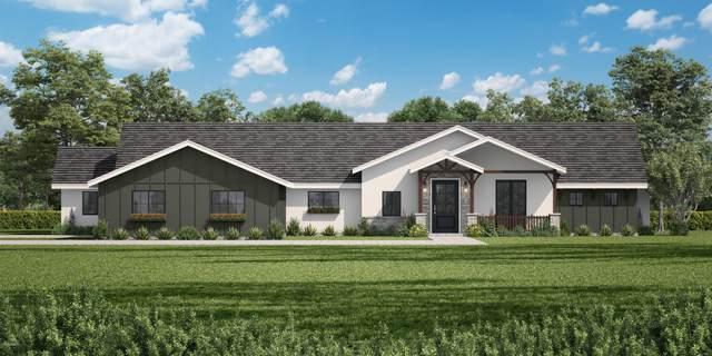 201 W Griswold Road, Phoenix, AZ 85021 (MLS #6096024) :: Power Realty Group Model Home Center