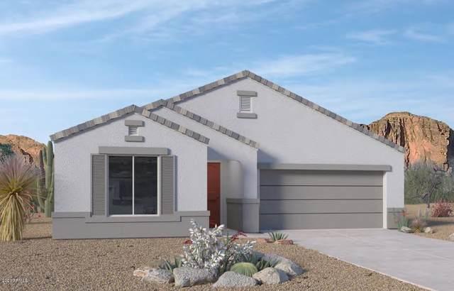 2135 E Questa Drive, Phoenix, AZ 85024 (MLS #6096033) :: Dave Fernandez Team | HomeSmart