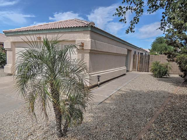14236 S 47TH Street, Phoenix, AZ 85044 (MLS #6096039) :: Yost Realty Group at RE/MAX Casa Grande