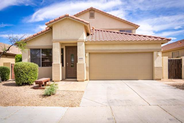18188 W Canyon Lane, Goodyear, AZ 85338 (MLS #6096128) :: Nate Martinez Team