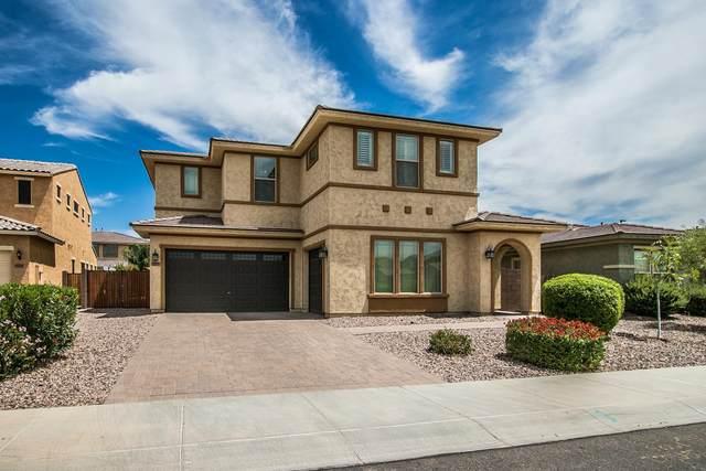 3708 E Carob Drive, Gilbert, AZ 85298 (MLS #6096136) :: REMAX Professionals