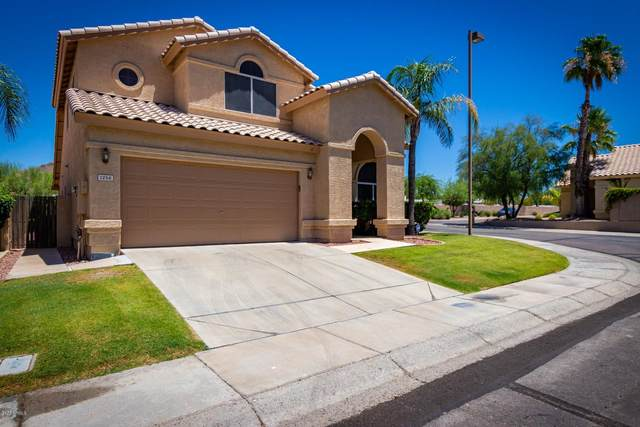 1256 E Redfield Road, Phoenix, AZ 85022 (MLS #6096176) :: Dave Fernandez Team | HomeSmart