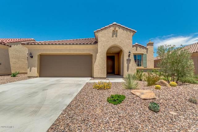 8130 W Cinder Brook Way, Florence, AZ 85132 (MLS #6096196) :: Dave Fernandez Team | HomeSmart