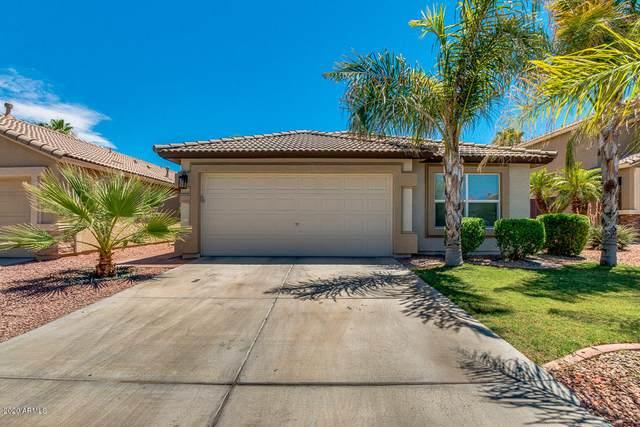 13021 W Avalon Drive, Avondale, AZ 85392 (MLS #6096208) :: Brett Tanner Home Selling Team
