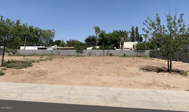 5525 N 2ND Place, Phoenix, AZ 85012 (MLS #6096225) :: The Laughton Team