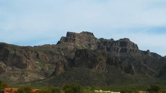 5311 E 5th Avenue, Apache Junction, AZ 85119 (MLS #6096291) :: The Daniel Montez Real Estate Group
