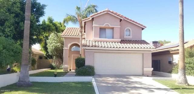4624 E Saint John Road, Phoenix, AZ 85032 (MLS #6096300) :: The Laughton Team
