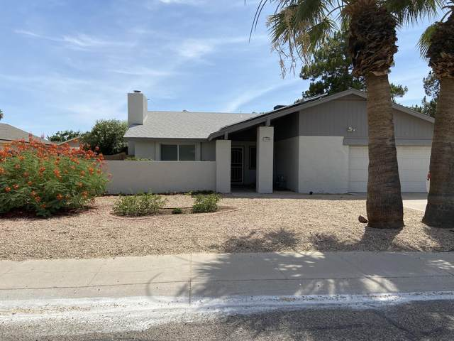 16008 N 25TH Avenue, Phoenix, AZ 85023 (MLS #6096423) :: Brett Tanner Home Selling Team