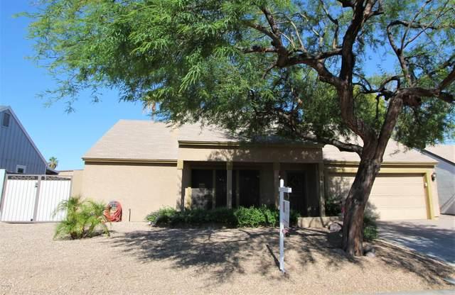 10225 S 47TH Street, Phoenix, AZ 85044 (MLS #6096455) :: REMAX Professionals