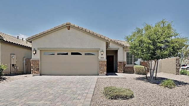 844 E Blossom Road, San Tan Valley, AZ 85143 (MLS #6096463) :: Lux Home Group at  Keller Williams Realty Phoenix