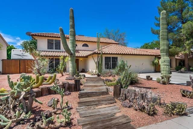 7145 W Corrine Drive, Peoria, AZ 85381 (MLS #6096534) :: Klaus Team Real Estate Solutions