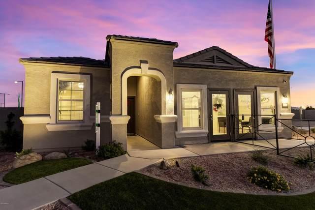 35895 W Catalonia Drive, Maricopa, AZ 85138 (MLS #6096585) :: Kepple Real Estate Group