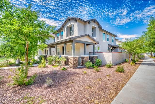 20575 W Terrace Lane, Buckeye, AZ 85396 (MLS #6096594) :: The Garcia Group