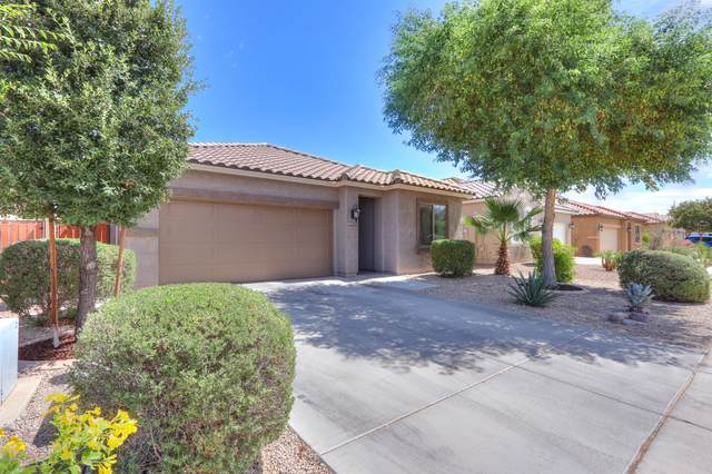 4108 E Velasco Street, San Tan Valley, AZ 85140 (MLS #6096602) :: Nate Martinez Team