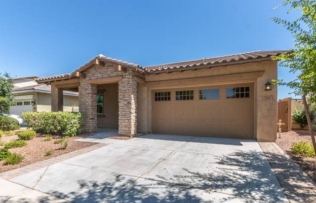 2202 N Park Meadows Drive, Buckeye, AZ 85396 (MLS #6096604) :: The AZ Performance PLUS+ Team