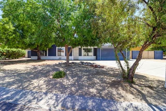 18423 N 43RD Place, Phoenix, AZ 85032 (MLS #6096608) :: The Laughton Team