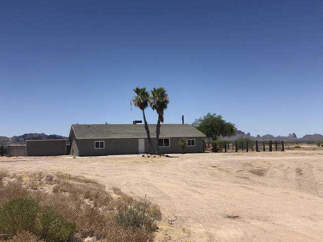 9022 S 538TH Avenue, Tonopah, AZ 85354 (MLS #6096613) :: The Property Partners at eXp Realty