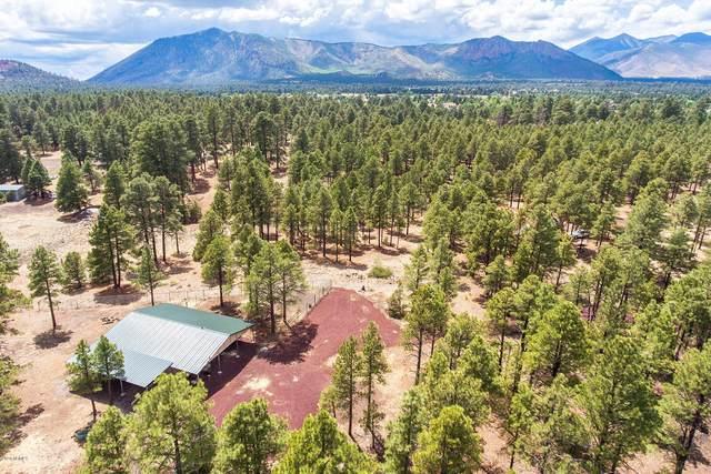 6422 Dove Trail, Flagstaff, AZ 86004 (MLS #6096633) :: Selling AZ Homes Team