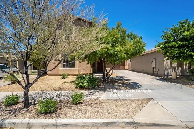 2514 W Florentine Road, Phoenix, AZ 85086 (MLS #6096682) :: Nate Martinez Team