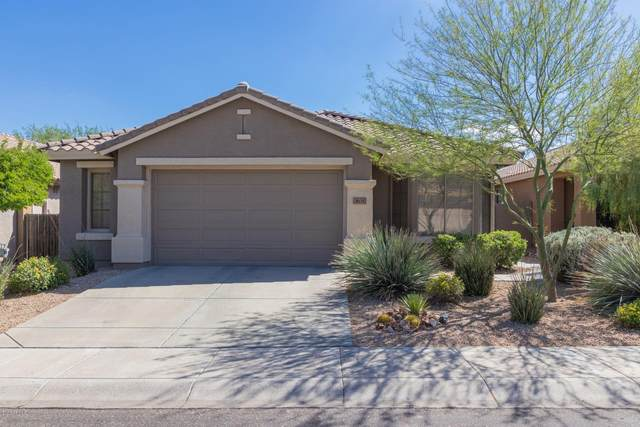 3635 W Ranier Court, Anthem, AZ 85086 (MLS #6096726) :: The Everest Team at eXp Realty