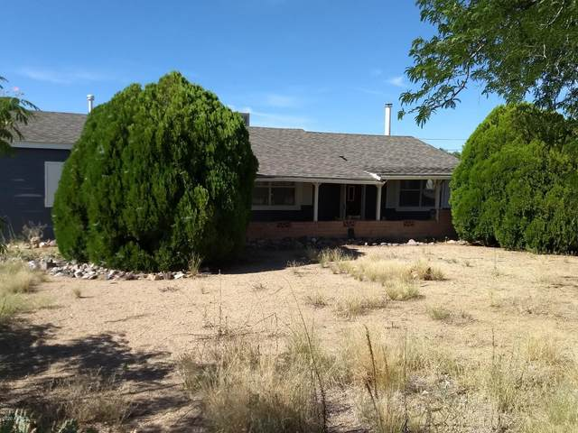 1087 El Valle Drive, Chino Valley, AZ 86323 (MLS #6096784) :: The Property Partners at eXp Realty