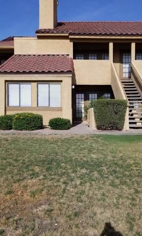4901 S Calle Los Cerros Drive #179, Tempe, AZ 85282 (MLS #6096827) :: Klaus Team Real Estate Solutions