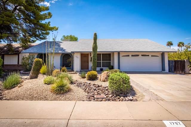 1767 W Angel Fire Terrace, Phoenix, AZ 85027 (MLS #6096848) :: The Laughton Team
