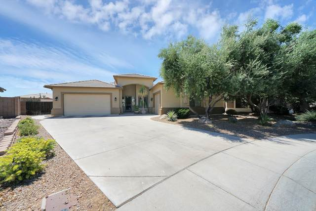 6123 N 132ND Drive, Litchfield Park, AZ 85340 (MLS #6096880) :: The Laughton Team