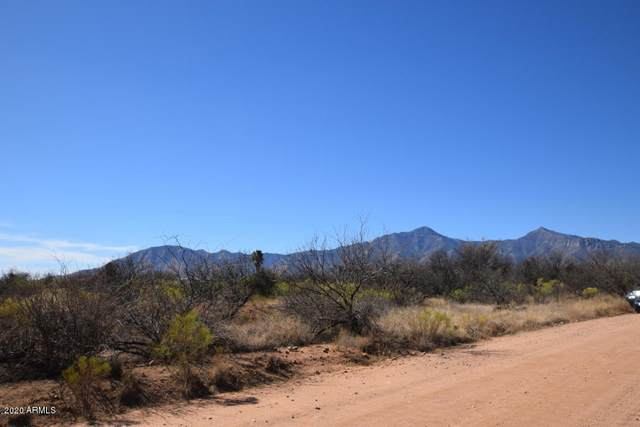 Xxxx E Chippewa Street, Hereford, AZ 85615 (MLS #6096881) :: Dave Fernandez Team | HomeSmart
