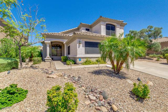 260 E Ashurst Drive, Phoenix, AZ 85048 (MLS #6096918) :: Brett Tanner Home Selling Team