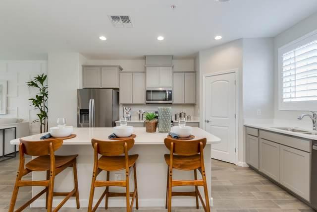 1255 N Arizona Avenue #1231, Chandler, AZ 85225 (MLS #6096937) :: The Daniel Montez Real Estate Group