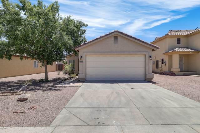 12131 W Dahlia Drive, El Mirage, AZ 85335 (MLS #6096950) :: CANAM Realty Group