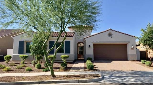 20414 W Edgemont Avenue, Buckeye, AZ 85396 (MLS #6096966) :: The AZ Performance PLUS+ Team