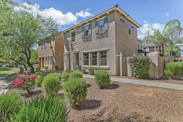 4462 E Remington Drive, Gilbert, AZ 85297 (MLS #6096978) :: The AZ Performance PLUS+ Team