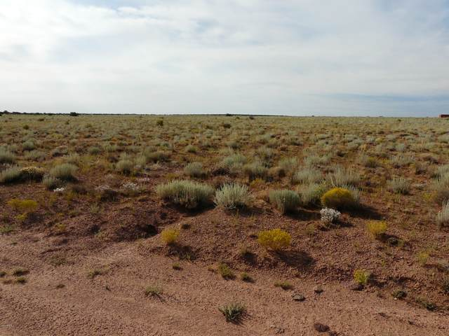 770 Ccr Unit 6 Lot 770, Heber, AZ 85928 (MLS #6096995) :: The Bill and Cindy Flowers Team