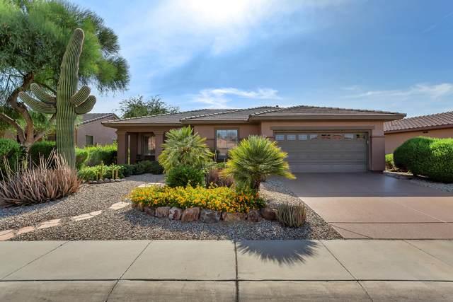 19766 N Los Altos Way, Surprise, AZ 85374 (MLS #6097014) :: Brett Tanner Home Selling Team