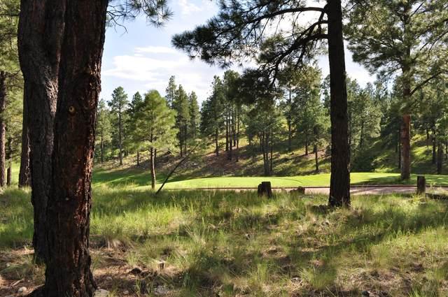 3160 S Solitaires Canyon Drive, Flagstaff, AZ 86005 (MLS #6097083) :: Selling AZ Homes Team