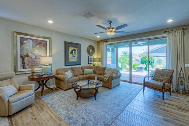 3734 E Turley Street, Gilbert, AZ 85295 (MLS #6097098) :: Conway Real Estate