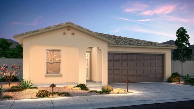 1872 N Wildflower Place, Casa Grande, AZ 85122 (MLS #6097126) :: Scott Gaertner Group