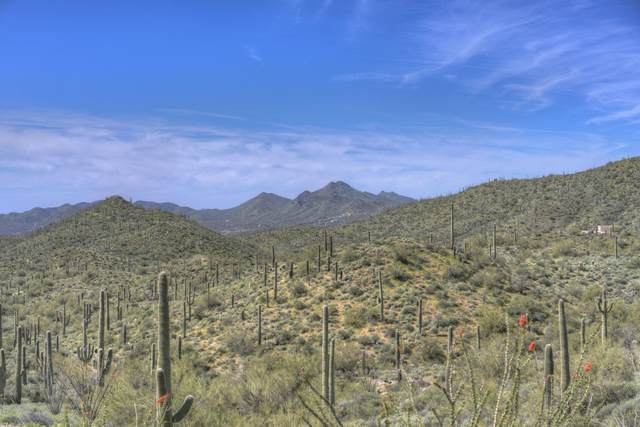 43510 N Cottonwood Canyon Road, Unincorporated County, AZ 85331 (MLS #6097131) :: Klaus Team Real Estate Solutions