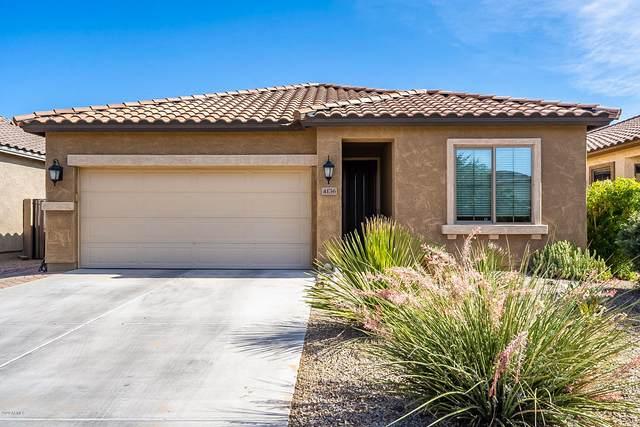 4136 E Velasco Street, San Tan Valley, AZ 85140 (MLS #6097135) :: Nate Martinez Team
