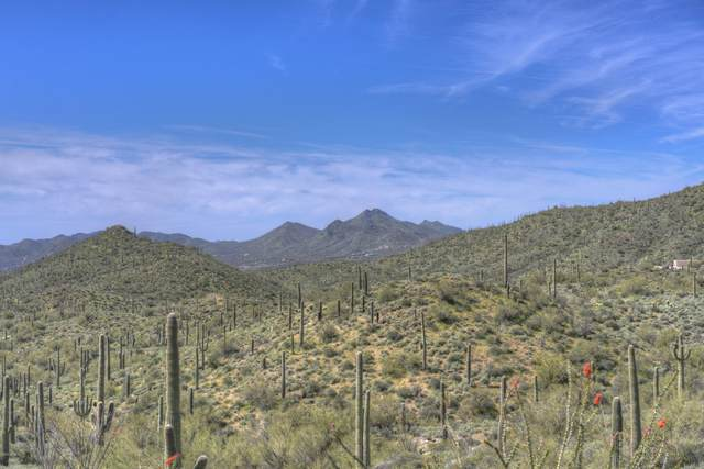 43570 N Cottonwood Canyon Road, Unincorporated County, AZ 85331 (MLS #6097137) :: Kepple Real Estate Group