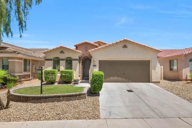 10772 W Woodland Avenue, Avondale, AZ 85323 (MLS #6097293) :: Brett Tanner Home Selling Team