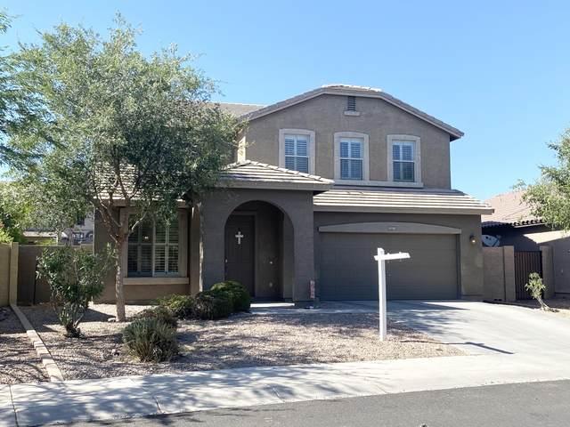 11718 W Daley Lane, Sun City, AZ 85373 (MLS #6097307) :: The Laughton Team