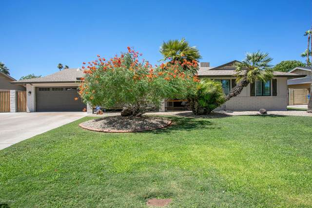 1828 W Seldon Way, Phoenix, AZ 85021 (MLS #6097340) :: Brett Tanner Home Selling Team